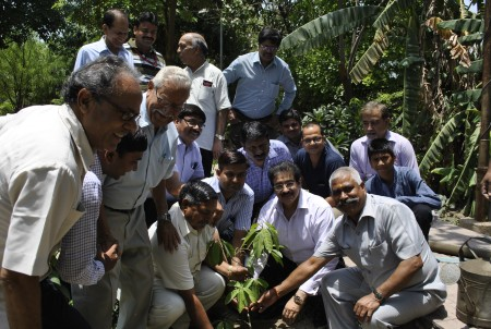 World Environment Day Celebrated at Noida